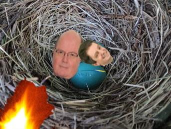 Bird nest blaze blamed for May 22 SkyTrain SNAFU.