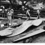 Assembling Boats, Waimakariri, Christchurch Regatta 1947.