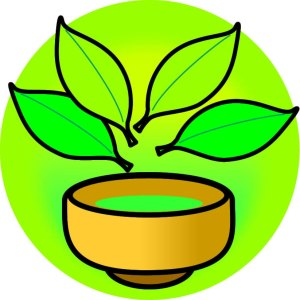 緑茶の利尿作用