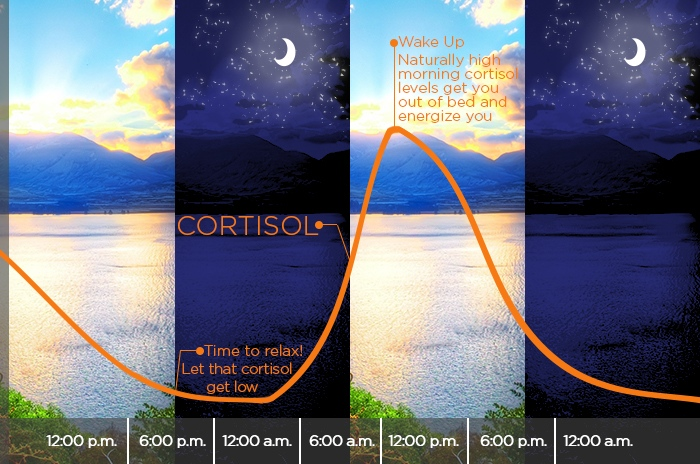 Cortisol sleep