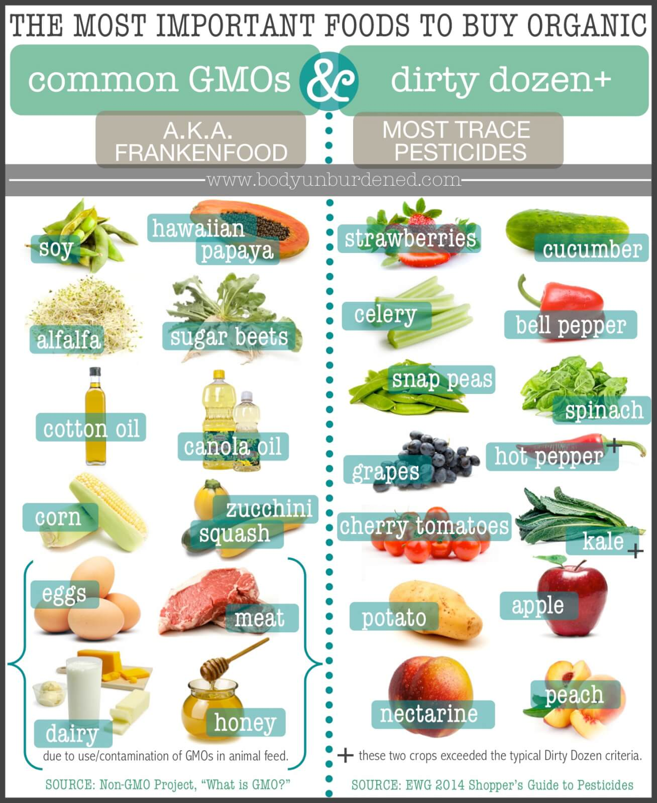 Buy Food The Most Important Foods To Buy Organic