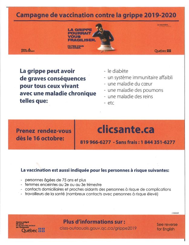 vaccination grippe 2019 fr