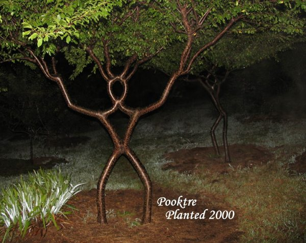 Images Pooktre People-Trees People-Trees-16