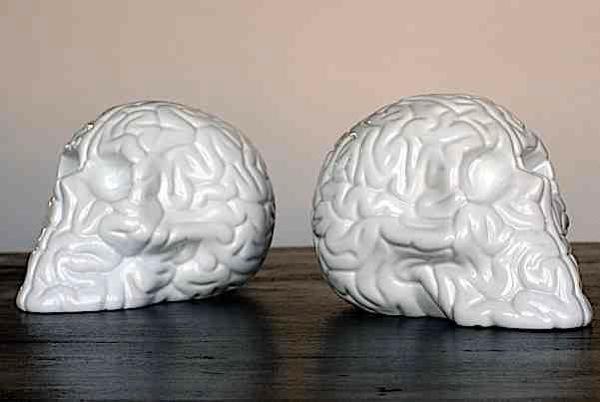 Skull brains