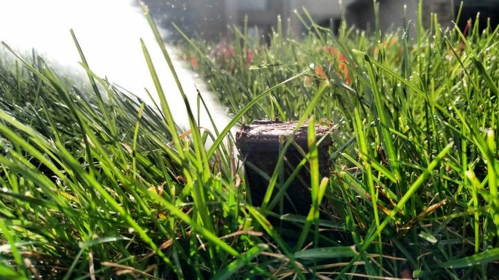 Conserva Irrigation of Northern Virginia