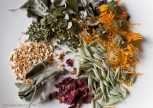 Try-Bulk-Herbs