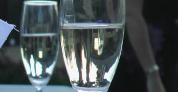 Bone Healing Impaired By Binge Drinking