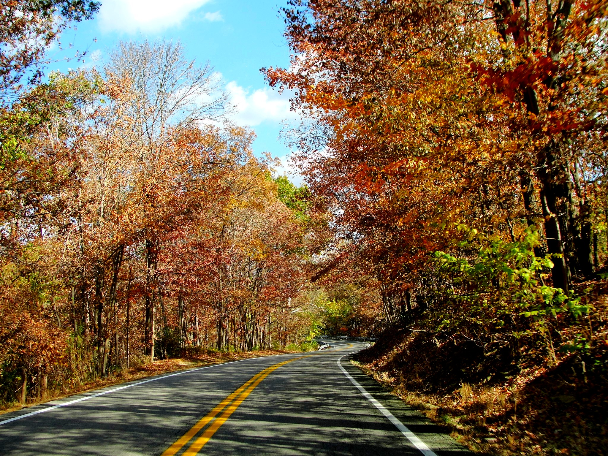 Fall Trees Background Wallpaper Country Road All I Ve Got Is A Photograph