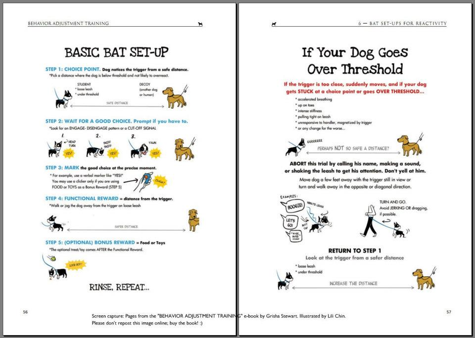 Classical Conditioning (notes from Clicker Expo) Boogie\u0027s blog - examples of classical conditioning