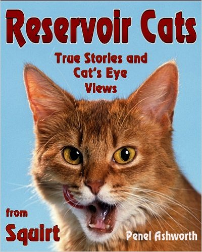 Book Cover: RESERVOIR CATS by Penel Ashworth