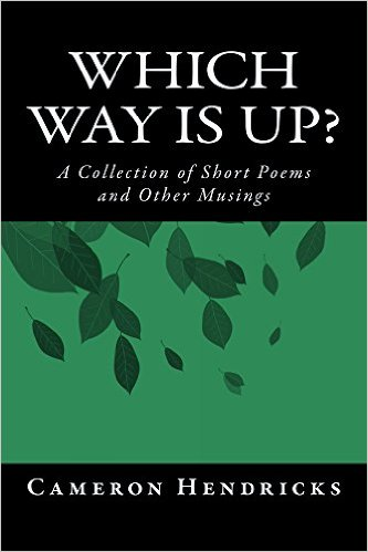 Book Cover: Which Way Is Up? by Cameron Hendricks