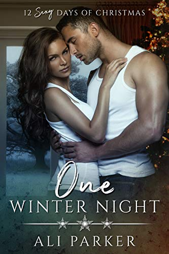 One Winter Night A Sexy Bad Boy Holiday Novel (The Parker's 12 Days of Christmas Book 1) by Ali Parker