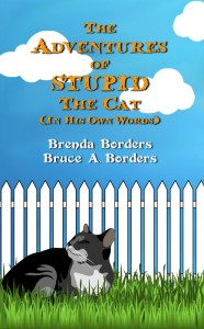 The-Adventures-of-Stupid-The-Cat500x800
