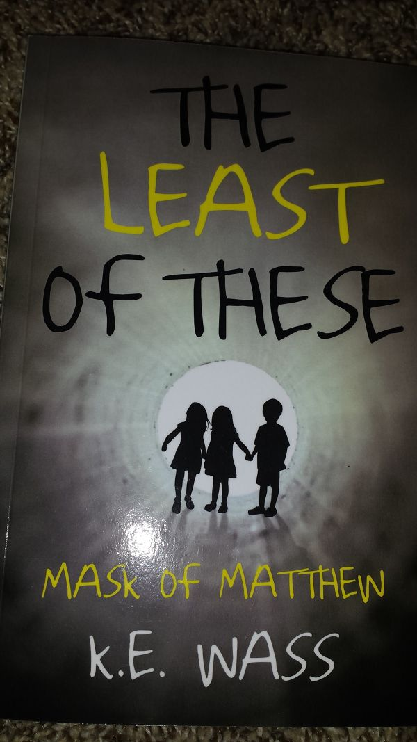 Novel Books About Family The Least Of These Mask Of Matthew By Karen Wass Booklife