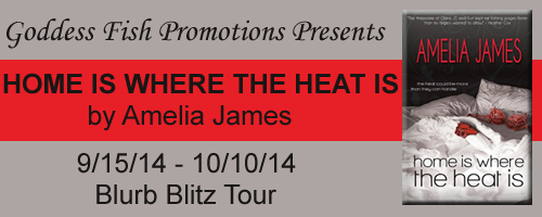 BBT Home is Where the Heat Is Tour Banner copy