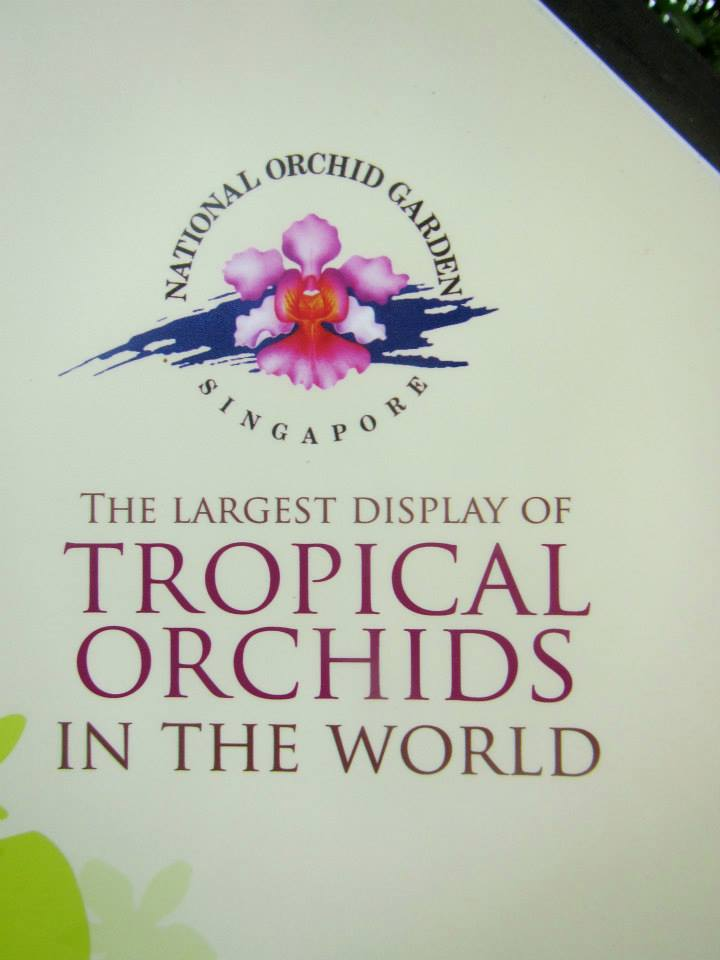 The Orchid Garden in Singapore has the Largest Display of Tropical Orchids in the World
