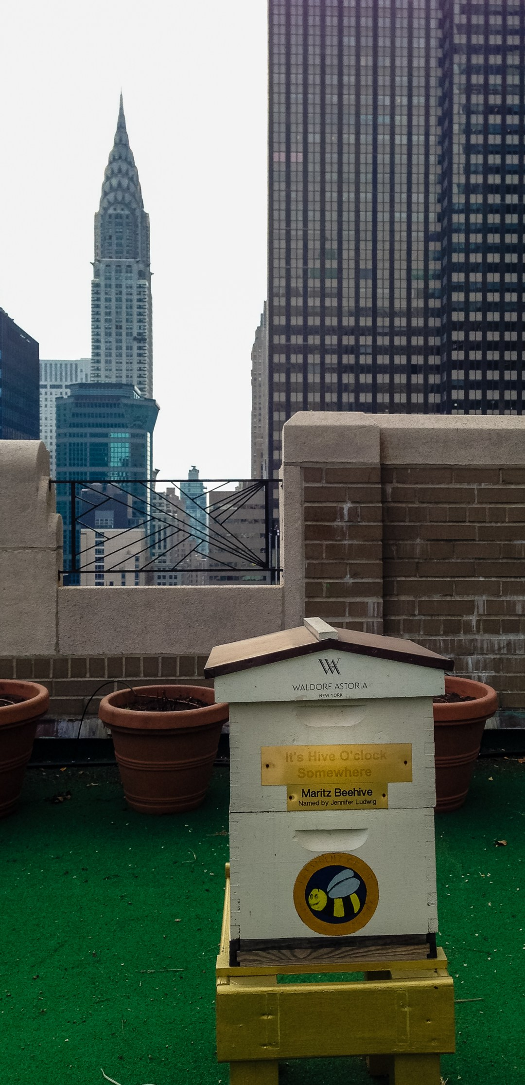Bee hives on the top of the Waldorf Astoria Hotel