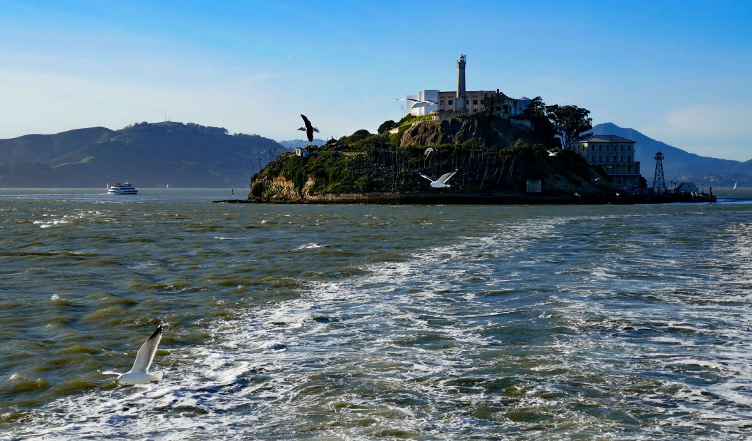 Alcatraz for boomervoice