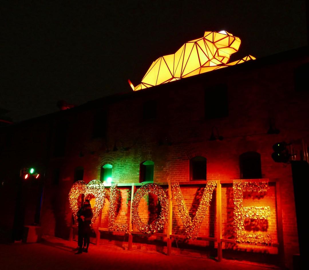 Love locks with big cat at Toronto light festival for boomervoice