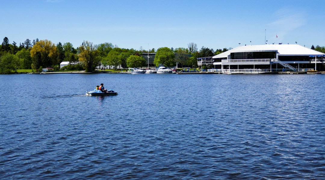 Paddle boat on Dows Lake for boomervoice