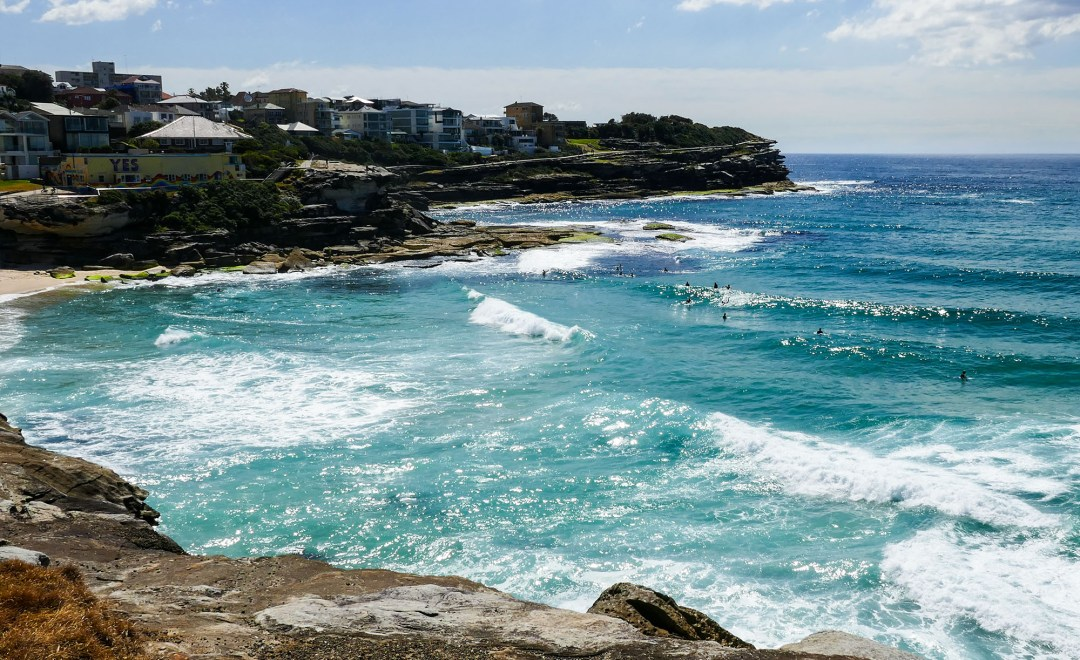 Surfers waiting for a wave on Coogee to Bondi walk for boomervoice