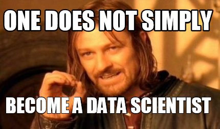 data scientist's skills