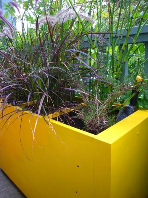 Medium Of Large Outdoor Planters