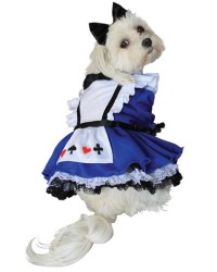 Alice In Wonderland Dog Costume : Alice In Wonderland ...