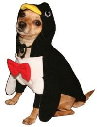 Penguin Dog Costume : Penguin Halloween Dog Costumes