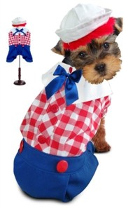 Costumes For Dogs : Small and Big Halloween Dog Costumes