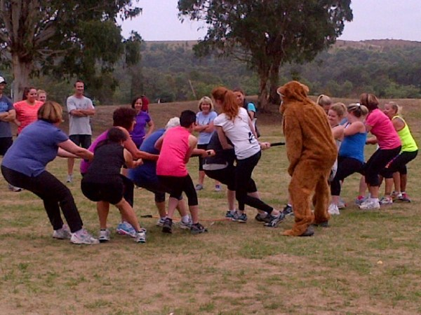 Tug Of Bear War