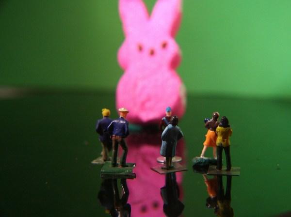 Easter Bunny Sighting