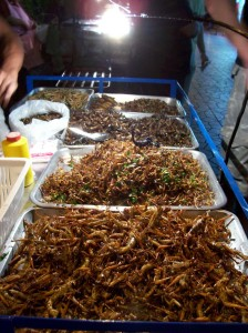 bangkok-bugs
