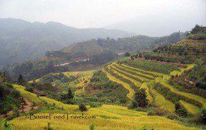 Terraced fields of Fujian province, China