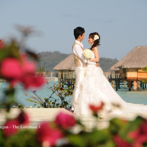 Wedding Pictures+Videos (11)