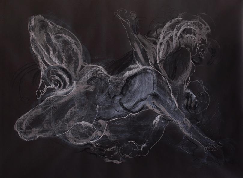 Schirmer - Constellation