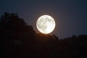 full-moon-1775764_640_pixabay