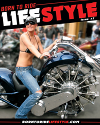 Lifestyle Issue #7