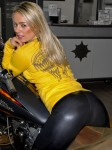 Born To Ride Biker Babe Gallery 43