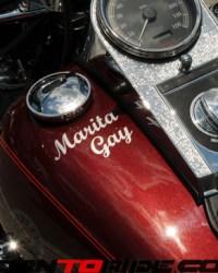 Manatee-Harley-10th-Anniversary-05-09-15--(203)