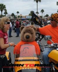 Great-Teddy-Bear-Run-11-15--(212)