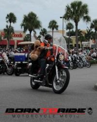 Great-Teddy-Bear-Run-11-15--(235)