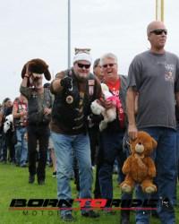Great-Teddy-Bear-Run-11-15--(301)