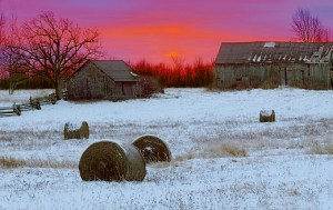 Barns in Winter Sunrise 02844-9