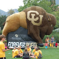 University of Colorado Inflatable Furry Buffalo