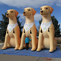 Mohawk Labrador Retriever Inflatable Mascot