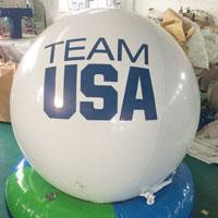 Team USA Seal Balloon