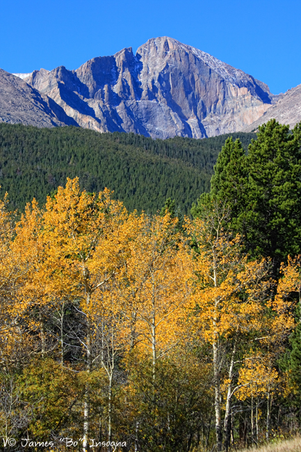 Autumn Aspens and Longs Peak - James Bo Insogna