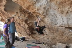 Mo Hueco Classics! Animal Acts V5 and Homer Simpson V3