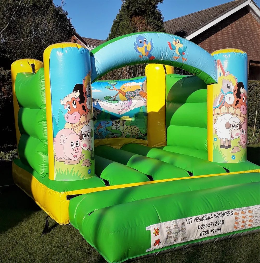 Couch To 5k Newtownards 10ftx12ft Animals Castle Bouncy Castle Hire Inflatable Game